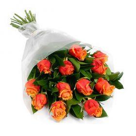 Orange rose for sale