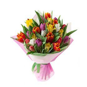 mixed tulip in bouquet