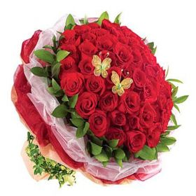 50 Roses Bunch