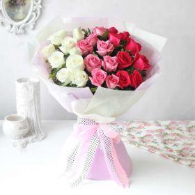 50 Mixed-color China Rose