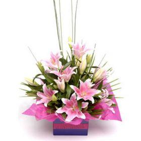 Stargazer Flower Box Bouquet