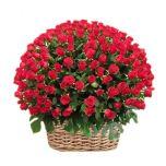100 Rose in Basket